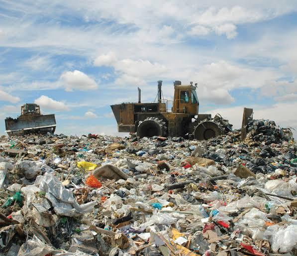 Organic Solid Waste
